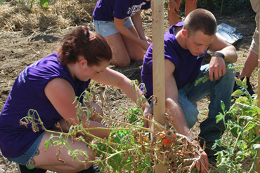 Community Service programs in Australia