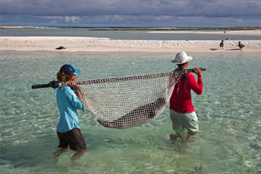 Study this summer with a Marine Biology Programs