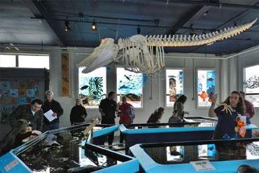 Marine Biology instruction