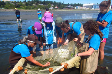 Working with sea creatures and marine life